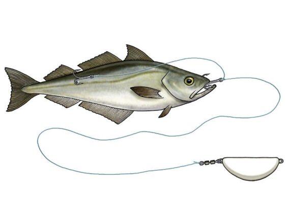 Hälleflundra rig, halibut anti twist rig, banansänke 300 gr, hälleflundra torsk sej sänke, orjasfiske.se